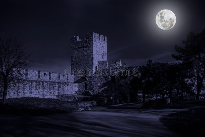 Ruïnes van oud kasteel in geheimzinnigheid maanlicht stock fotografie