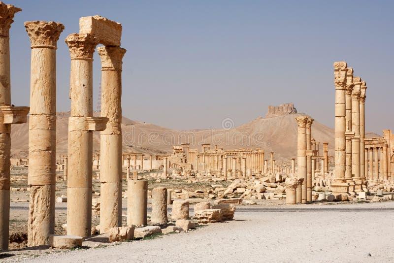 Ruïnes van oude stad van Palmyra - Syrië royalty-vrije stock fotografie