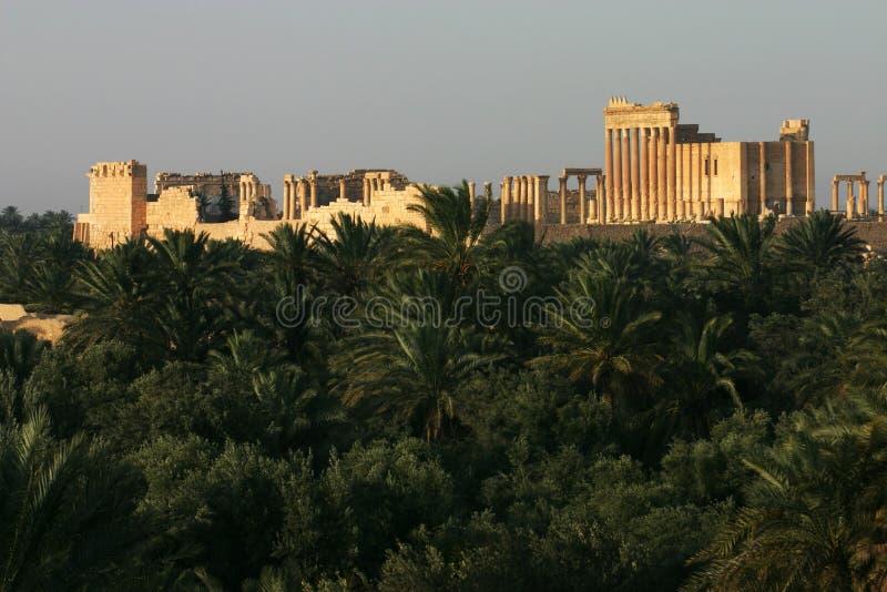 Ruïnes van Palmyra met Baal-Tempel, Syrië stock foto's