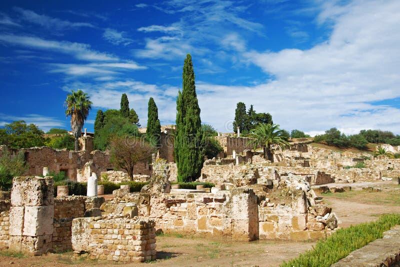 Ruïnes van roman villa's in Carthago stock foto's