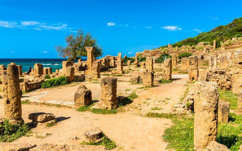 Ruïnes van Tipasa, een Roman colonia in Algerije, Noord-Afrika royalty-vrije stock afbeelding