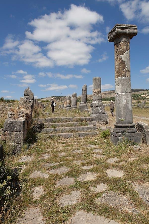 Download Ruïnes Van Volubilis. Marokko Stock Foto - Afbeelding bestaande uit ruïnes, gras: 39103270