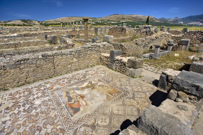 Ruïnes van Volubilis - mozaïek royalty-vrije stock fotografie