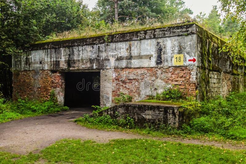 Ruïnes van Wolfsschanze royalty-vrije stock foto's