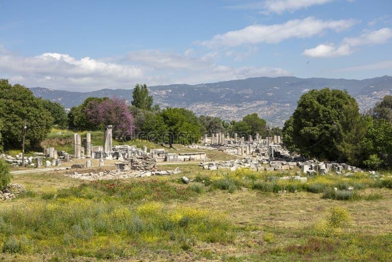 Ru?nas do santu?rio antigo Lagina, Turquia imagem de stock royalty free