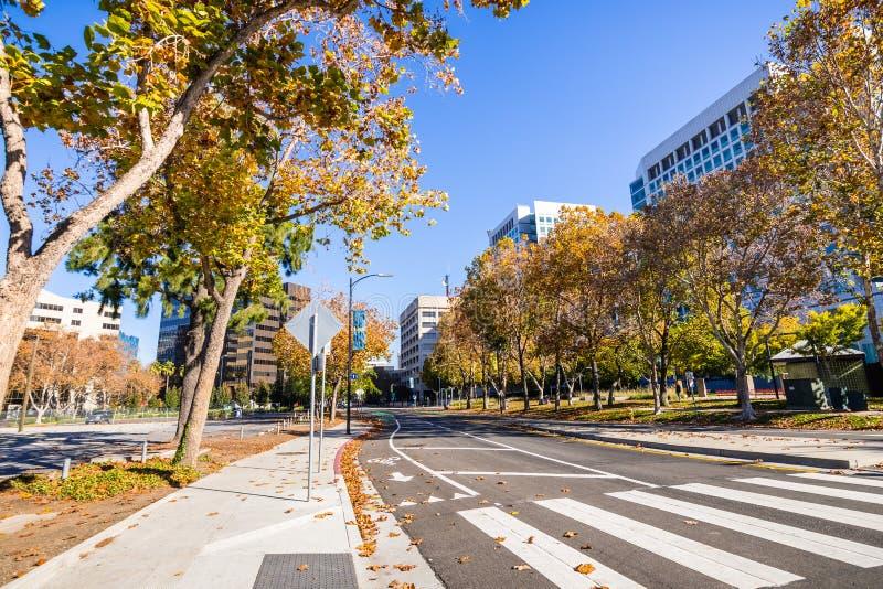 Rua alinhada com as árvores do sicômoro perto de San Jose do centro fotografia de stock royalty free