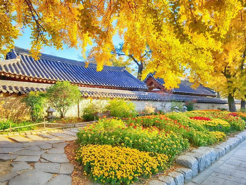 Rua da cidade coreana tradicional da vila de Jeonju Hanok, Jeonju, Jeollabukdo, Coreia do Sul fotos de stock royalty free