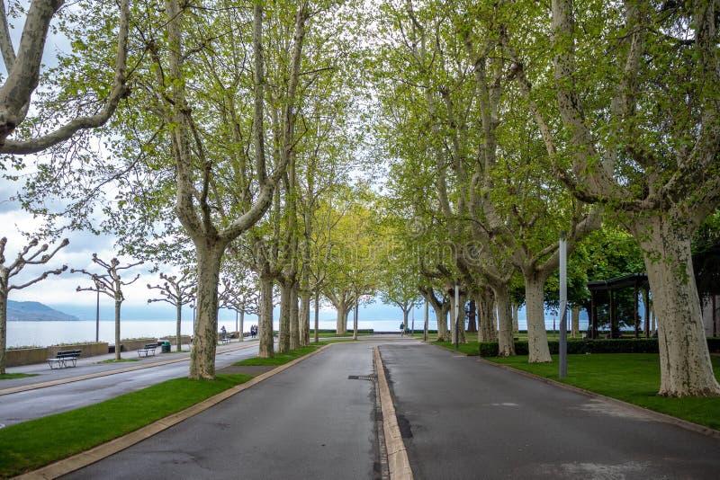 Rua de Alphalt com o parque das árvores em público ao lado do lago geneva, Lausana imagem de stock