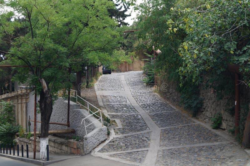 Rua de Brumata fotografia de stock