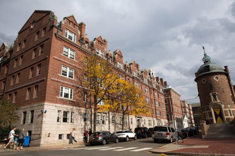 Rua de cambridge em Massachusetts imagens de stock royalty free