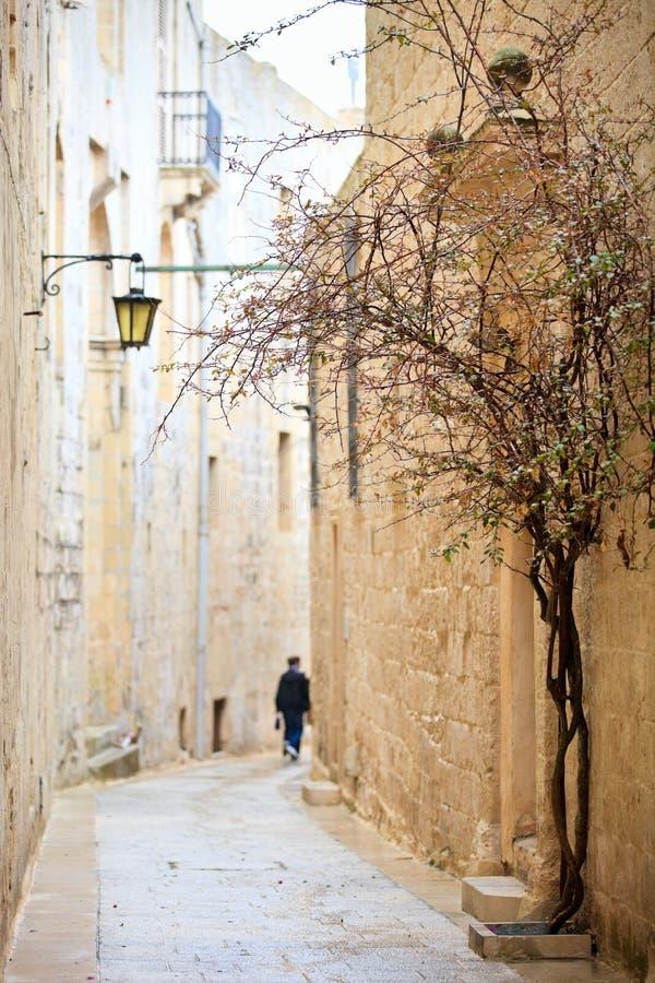 Rua de Mdina foto de stock