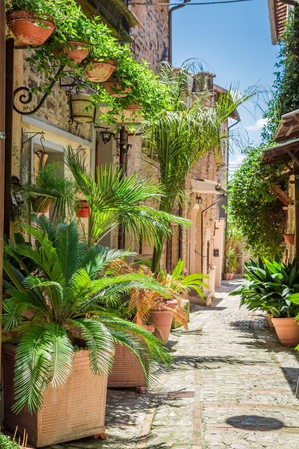 Rua decorada maravilhosa na cidade pequena em Itália fotos de stock royalty free