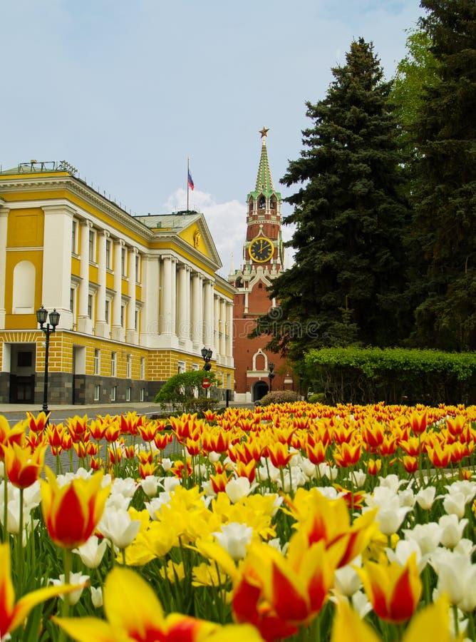 Rua dentro de Kremlin, Moscovo imagens de stock