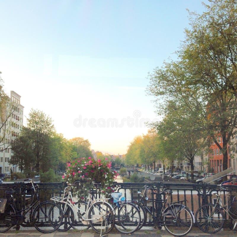 Rua do canal de Amsterdão imagens de stock royalty free
