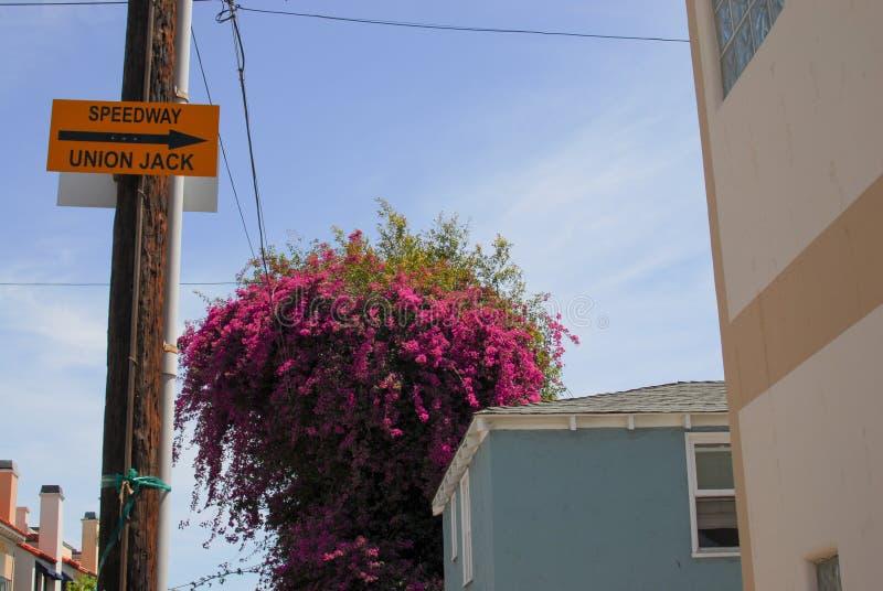 A rua do estrada assina dentro Veneza, Califórnia fotografia de stock