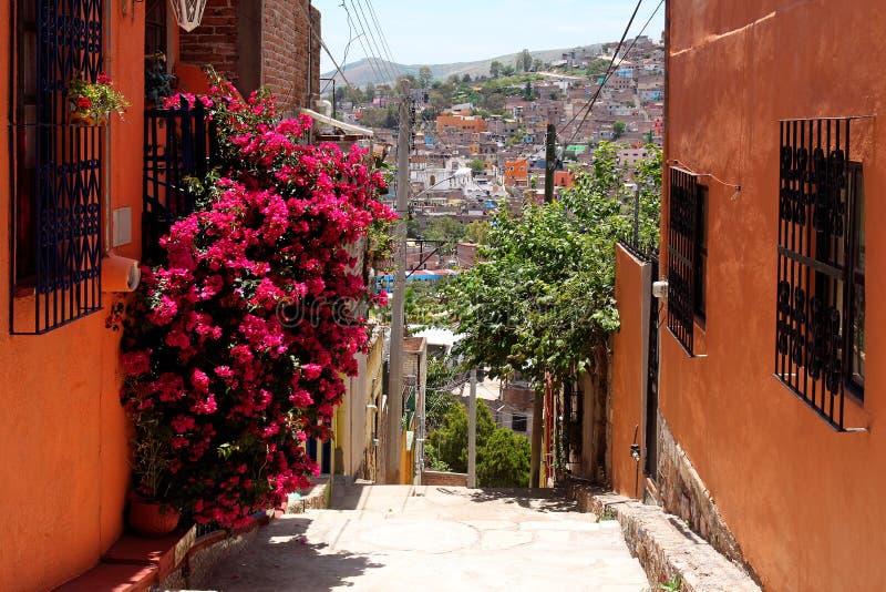 Rua estreita bonita em Guanajuato, México imagem de stock