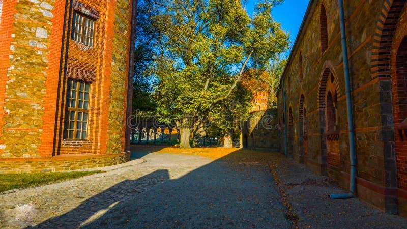 Rua na cidade velha: outono bonito no jardim - Polônia do norte - com um túnel no meio das montanhas - com um corr fotografia de stock