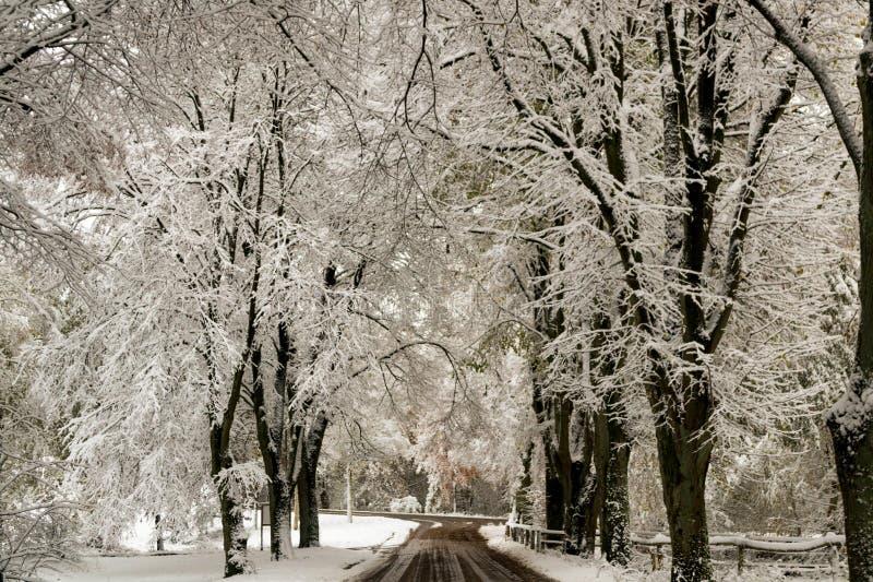 Rua nevado imagens de stock