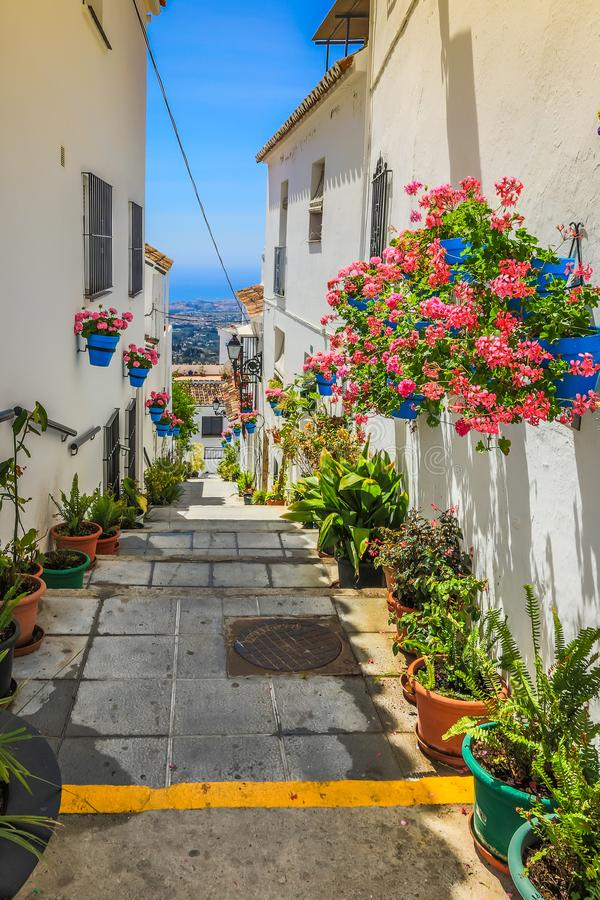 Rua pitoresca de Mijas com os potenciômetros de flor nas fachadas Andalus imagem de stock royalty free