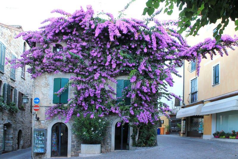 Rua velha em Sirmione no lago Garda fotografia de stock royalty free