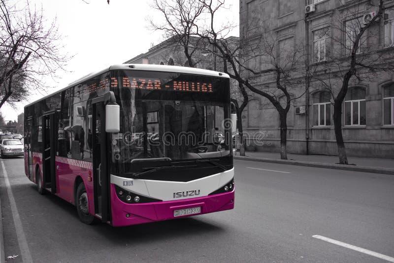 Ruas de Baku, ônibus novo fotos de stock royalty free