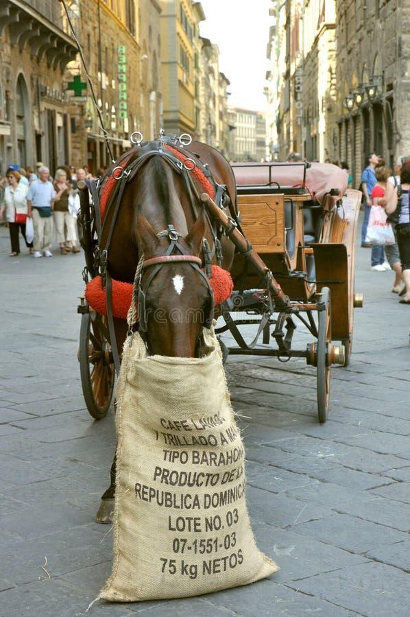 Ruas de Florença, Italy foto de stock