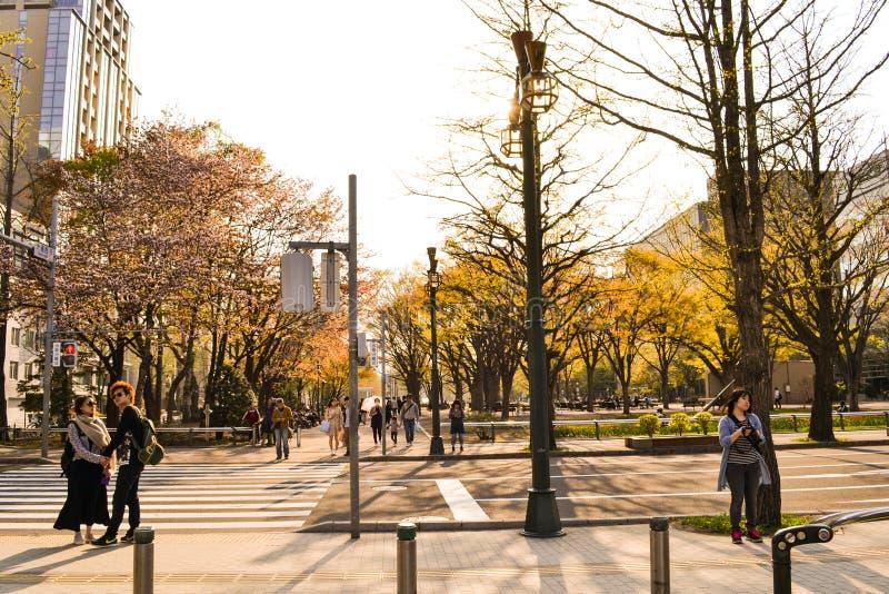 Ruas de Hokaido com povos imagem de stock royalty free