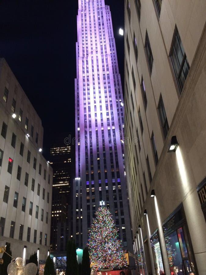 Ruas de New York foto de stock royalty free
