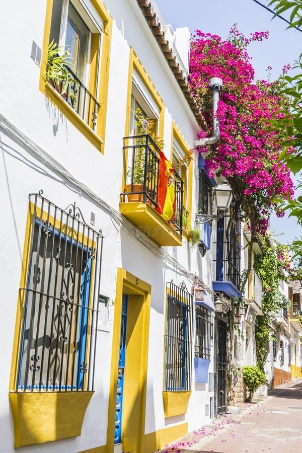 ruas e típico estreitos de Marbella, paredes brancas com floral imagens de stock royalty free