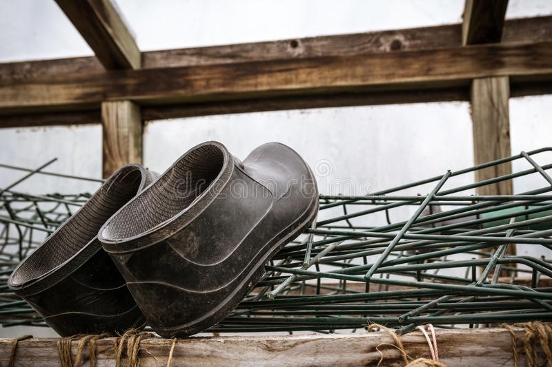 Rubber boots of a farmer lying in greenhouse. Agriculture and to stock photo