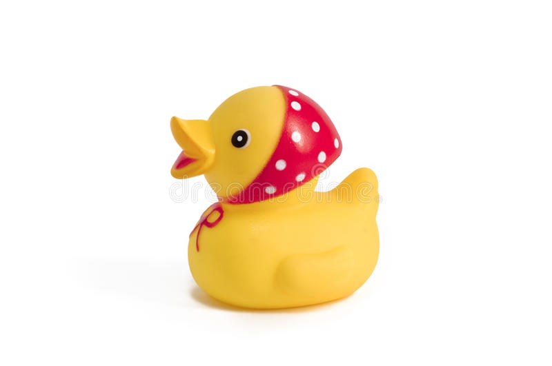 Rubber duck. In a headscarf stock image