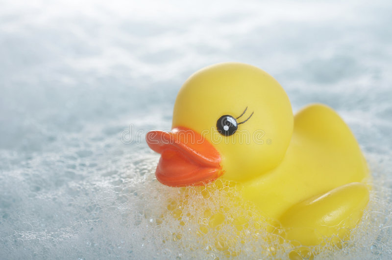 Rubber duck. Yellow rubber duck floating in suds in bathtub stock image