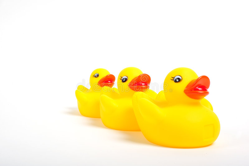 Rubber duck. Yellow rubber duck leading two smaller rubber ducks royalty free stock photos