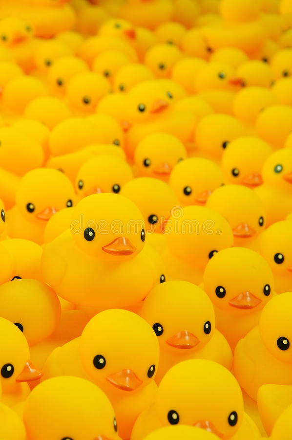 Download Rubber duck stock image. Image of group, rubber, cute - 35222585