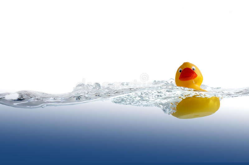 Rubber Duck In Water Stock Image