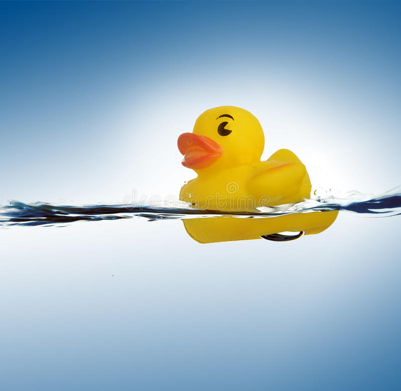 Rubber duck in water. Yellow rubber duck in water with blue background stock images