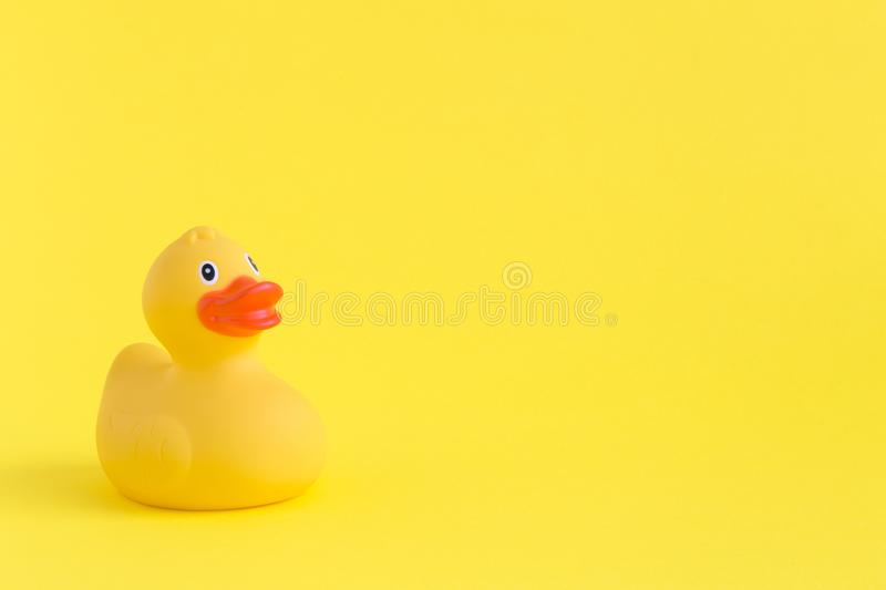 Rubber duck toy for swimming on yellow background. royalty free stock image