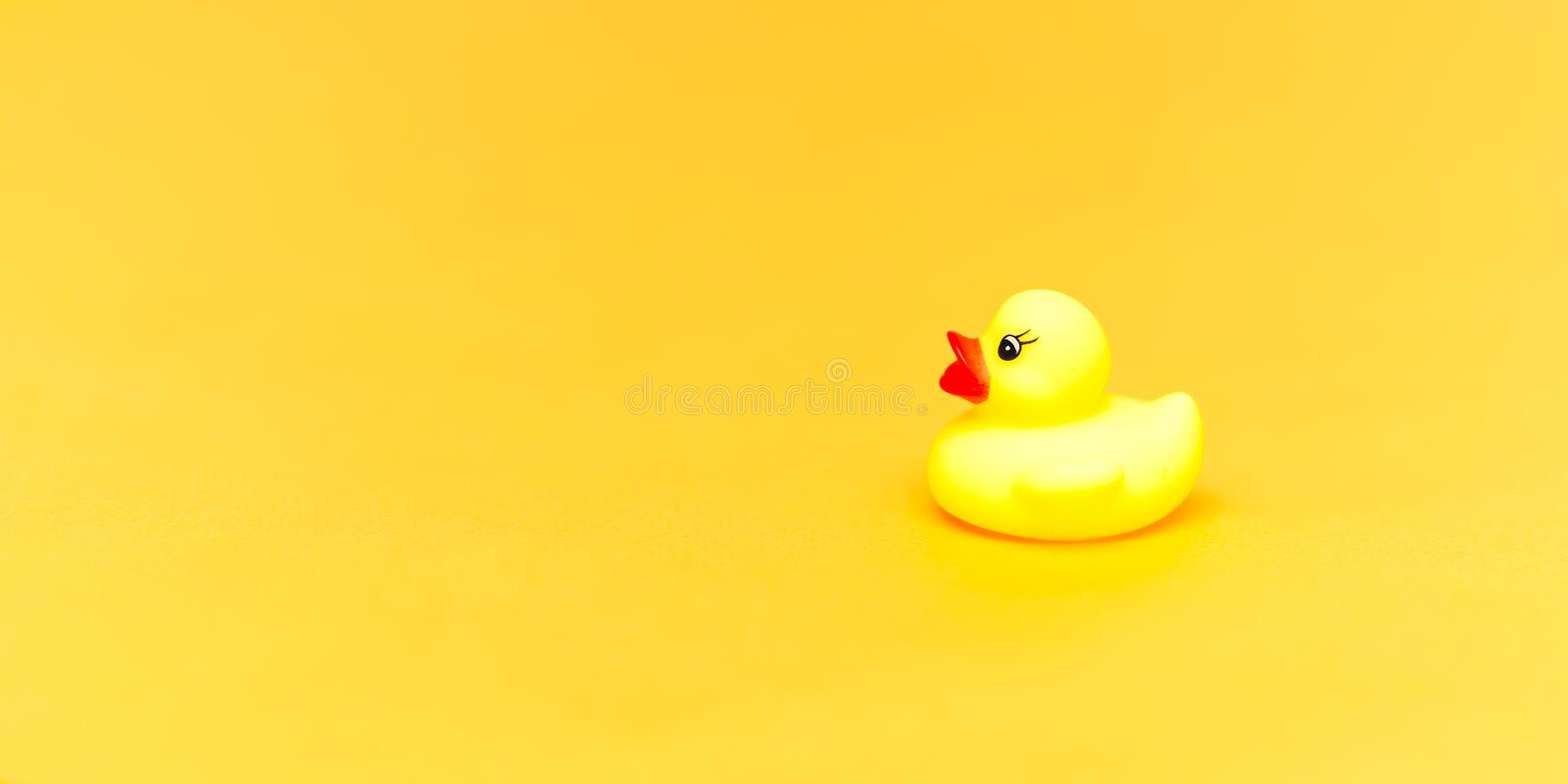 Rubber duck on yellow background. Space for text. copyspace. Minimalism. Concept stock photos