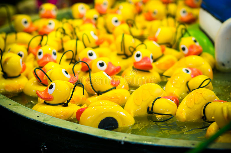 Rubber ducks stock image
