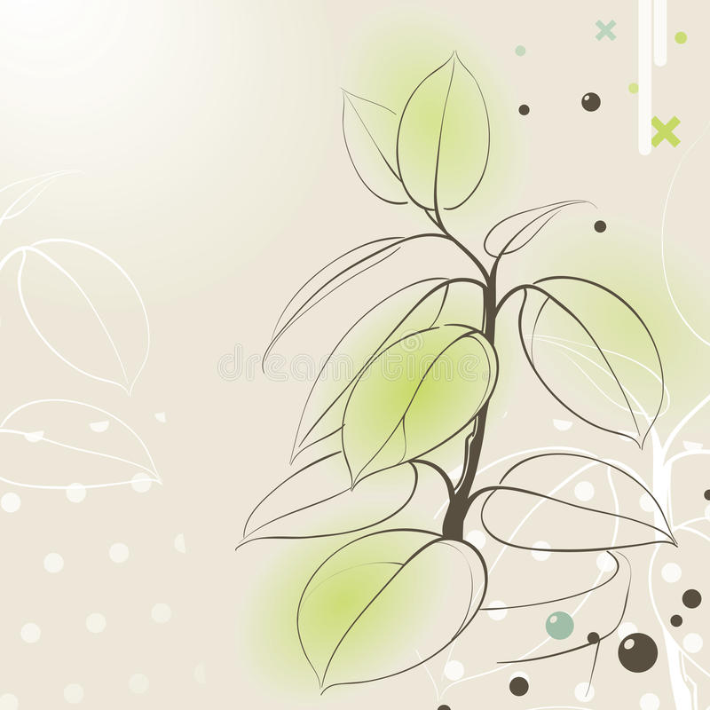 Download Rubber plant in pot stock vector. Illustration of growth - 22734537