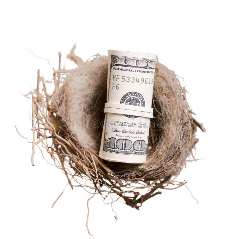 Rubberbandful sto dolarowych rachunków w ptaku zdjęcie stock