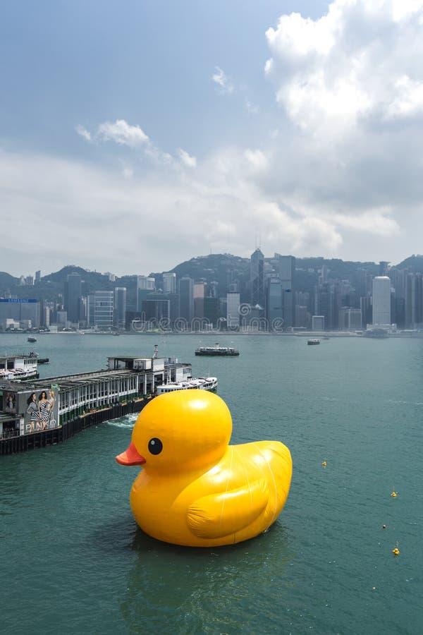 Rubberduck project, Hong Kong royalty-vrije stock foto's