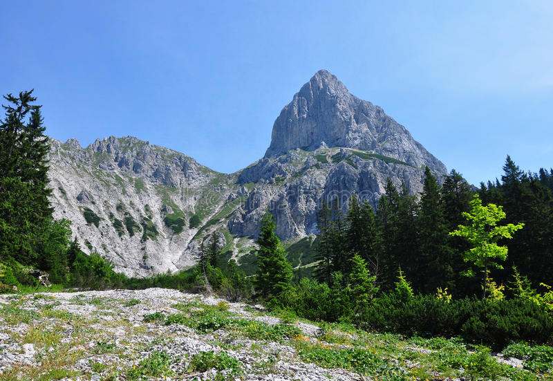 Rubble field with Admonter Kalbling and Sparafeld, Austria royalty free stock photos