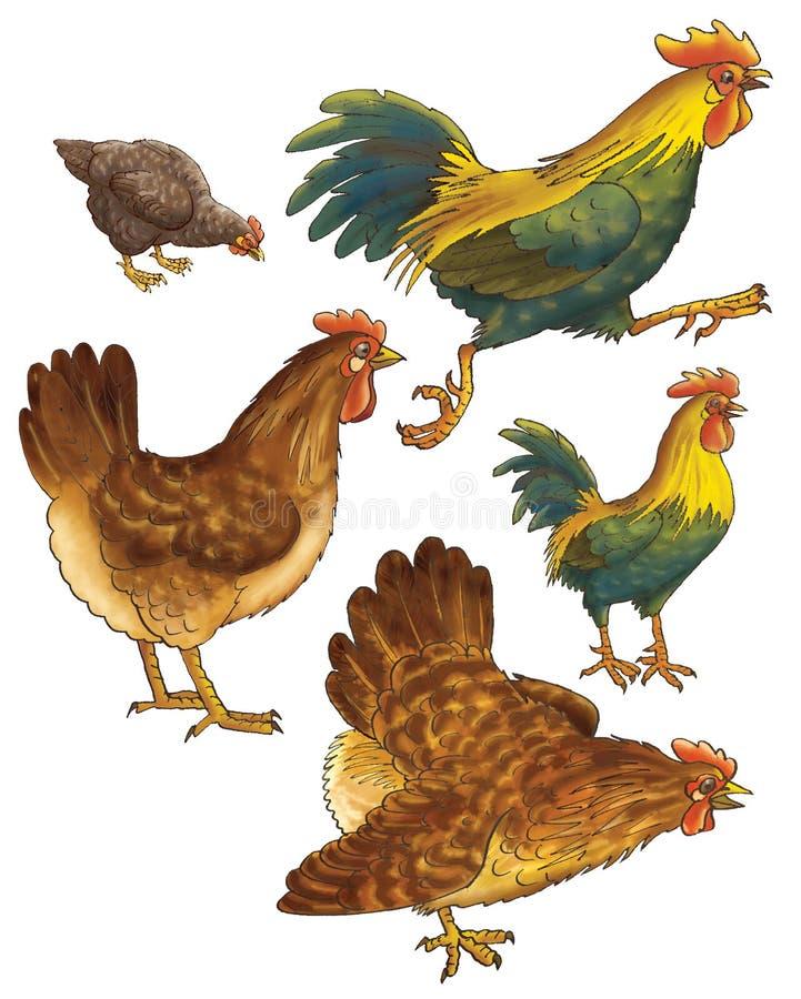 Rubinetti e galline illustrazione vettoriale