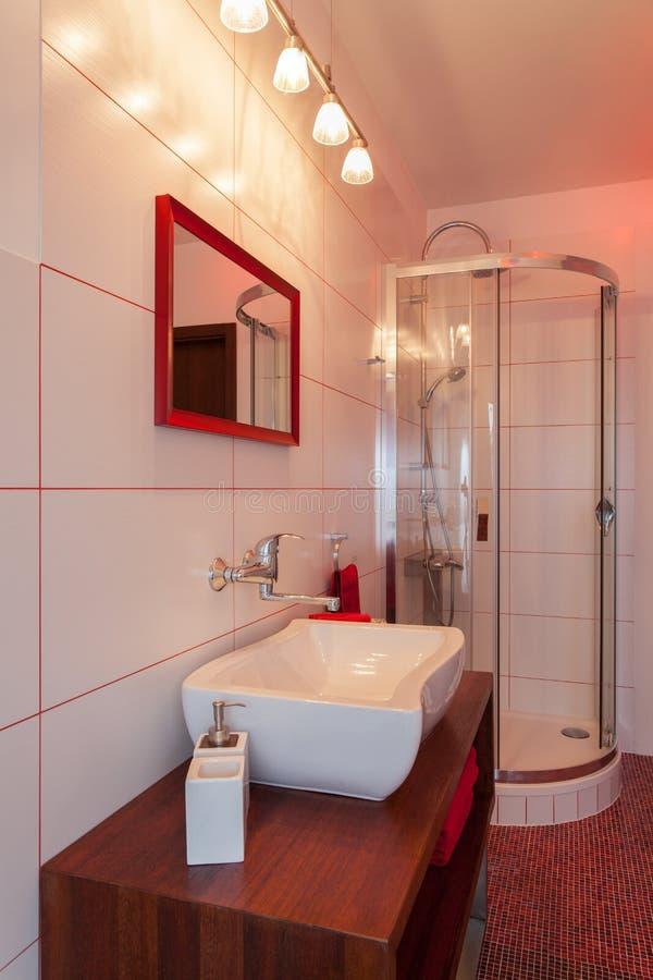 Rubinu dom - obmycie prysznic i basen zdjęcia royalty free
