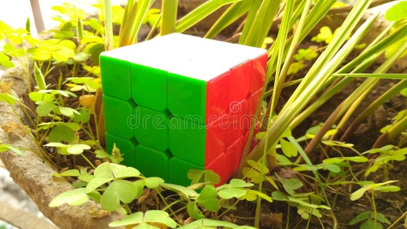 Rubix& x27;s Cube royalty free stock photo