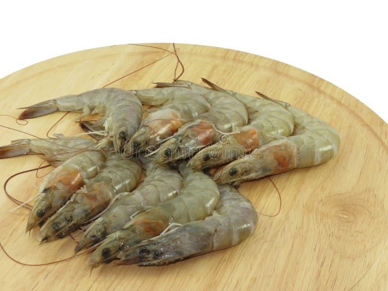Rubiyan shrimps prawns royalty free stock images