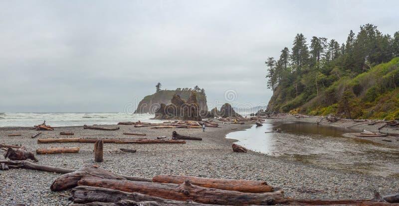 Ruby Beach imagens de stock royalty free