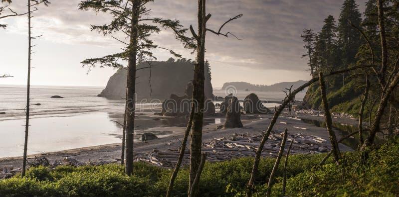 Ruby Beach Panoramic fotografia de stock