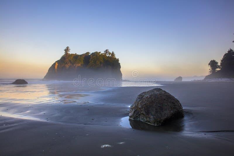 Ruby Beach Washington royaltyfri foto